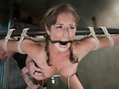 Pigtailed bondaged pet gets punished..